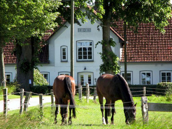 Ferienhof Reumoos